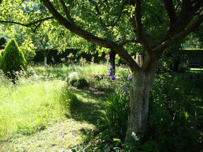 Jardin des ifs Châtenois