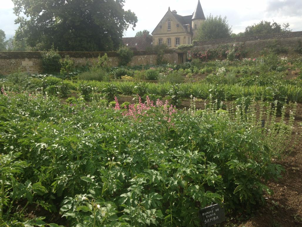 Jardin Potager des Etournelles