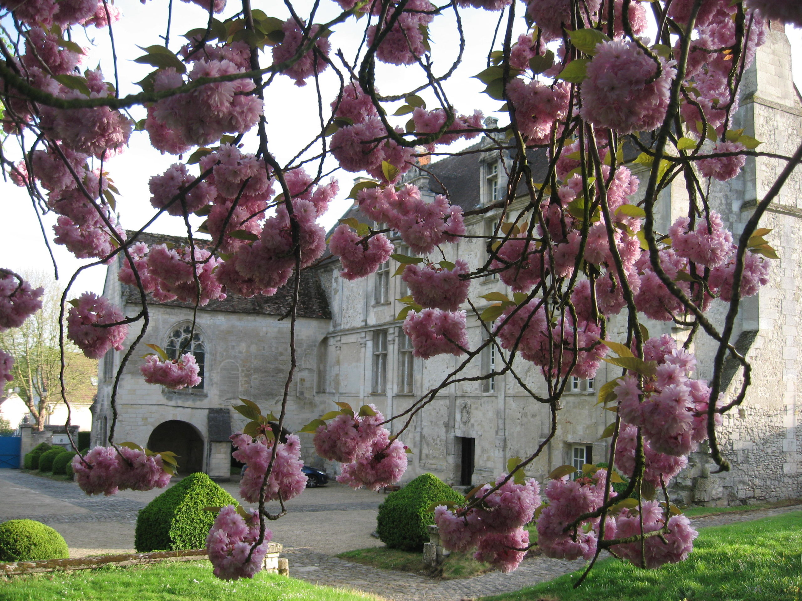 """Jardins de """"La Commanderie de Neuilly"""""""