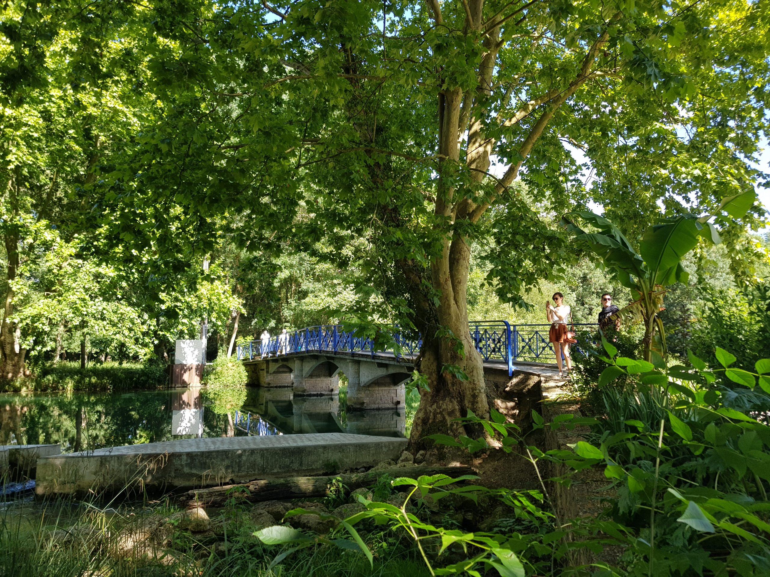 La Roussille, Eden du Marais Niort