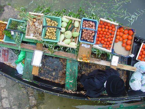 Le Vanneau-Irleau et son marché sur l'eau Le Vanneau-Irleau