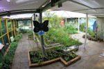 Les coulisses du Jardin des Papillons Maison Paris Nature Paris