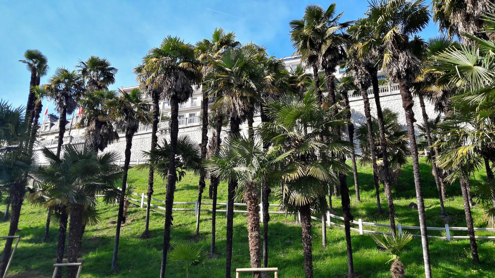 Les Jardins Joantho Pau