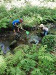 Les pieds dans l'eau Rochefort-en-Terre