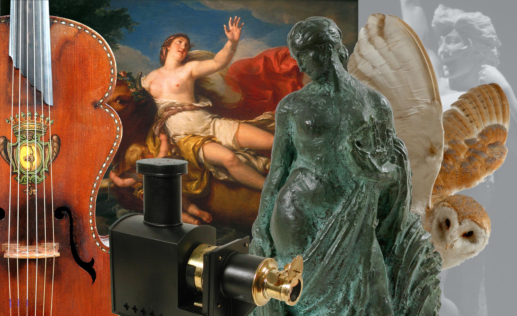 Musée Bernard d'Agesci Niort