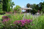 Les incontournables de Pau - Au fil des jardins Pau   2021-07-26