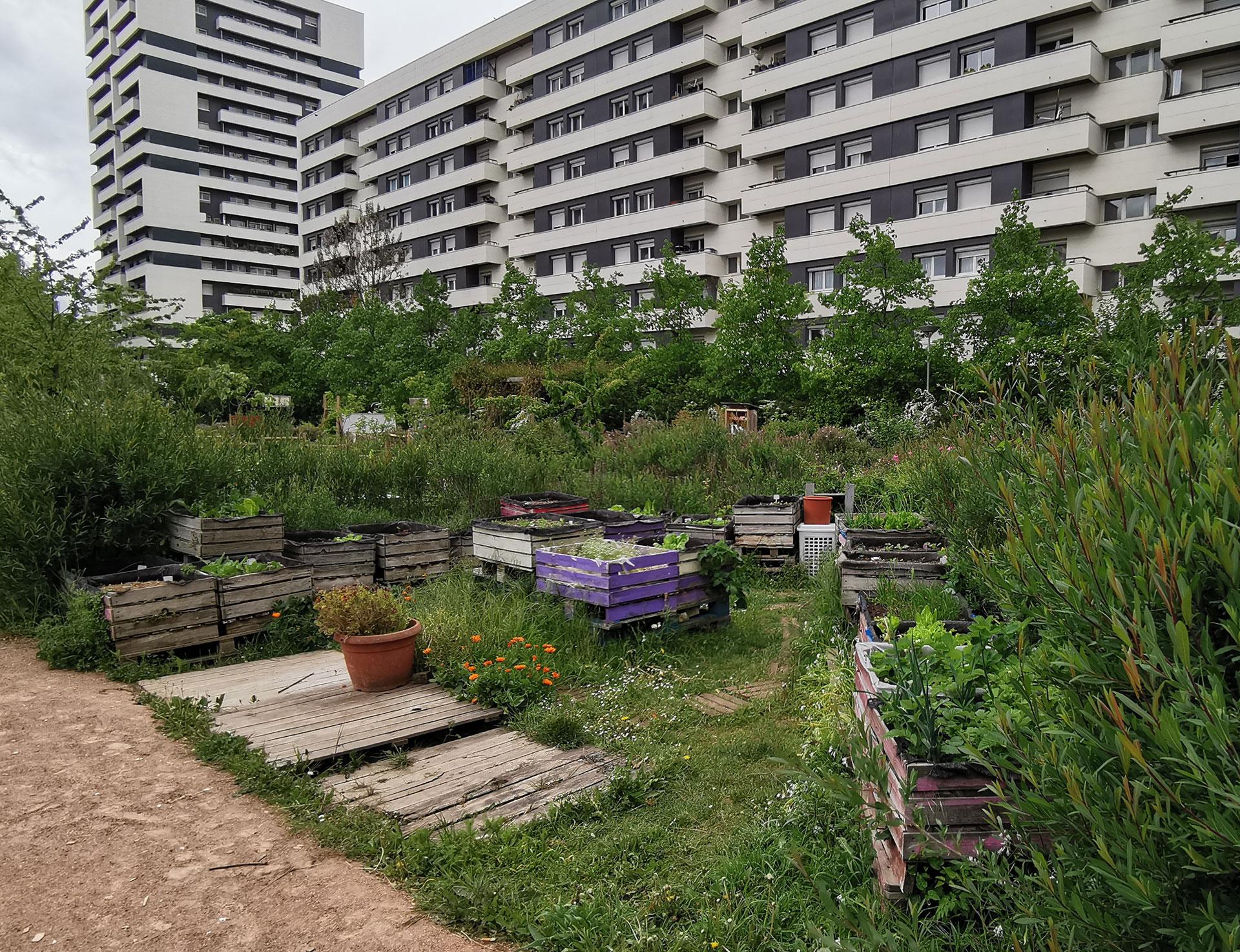 Végétalisation participative Maison du Jardinage – Pôle ressource Jardinage Urbain