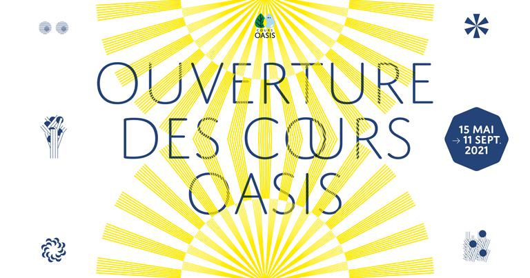 Boîte à jeux Oasis Cour Oasis de l'école Emeriau Paris