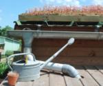 La gestion écologique de l'eau au jardin Maison du Jardinage - Pôle ressource Jardinage Urbain Paris