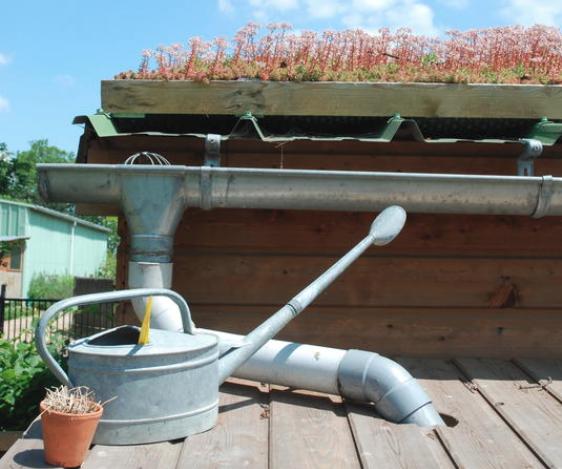 La gestion écologique de l'eau au jardin Maison du Jardinage – Pôle ressource Jardinage Urbain