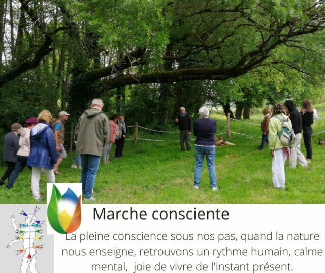 Marche consciente