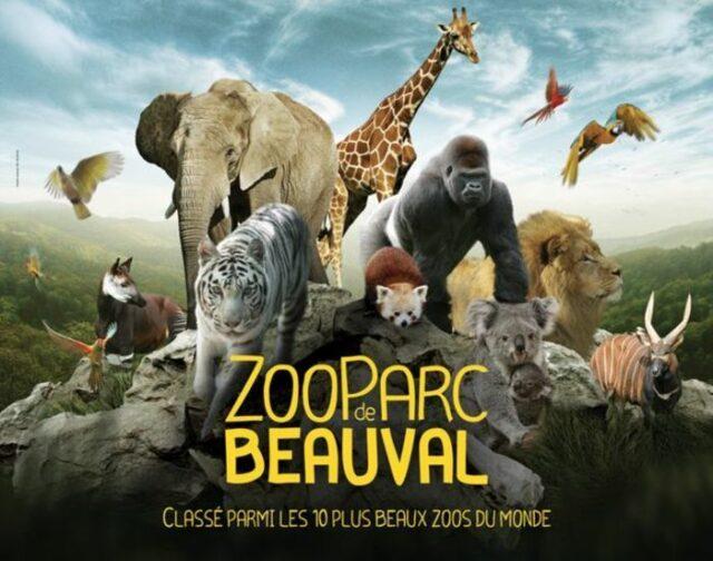 séjour château et zoo noyant de tourraine Noyant-de-Touraine