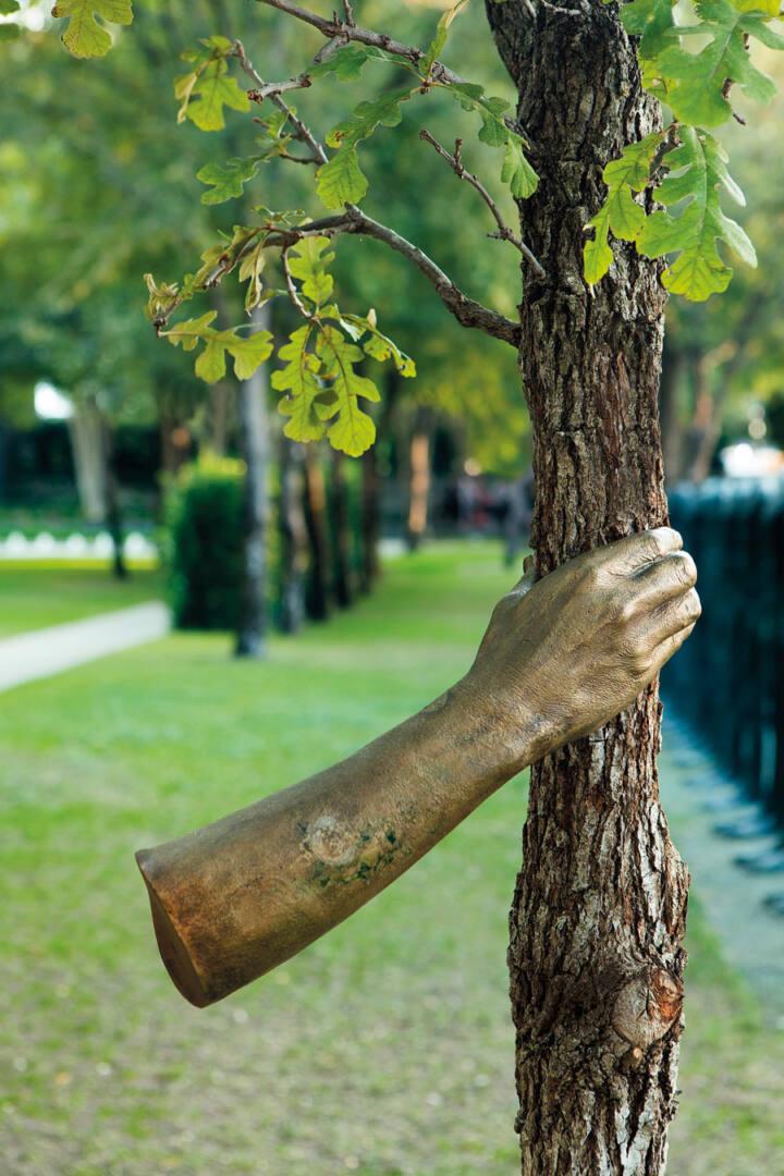 giuseppe penone main arbre