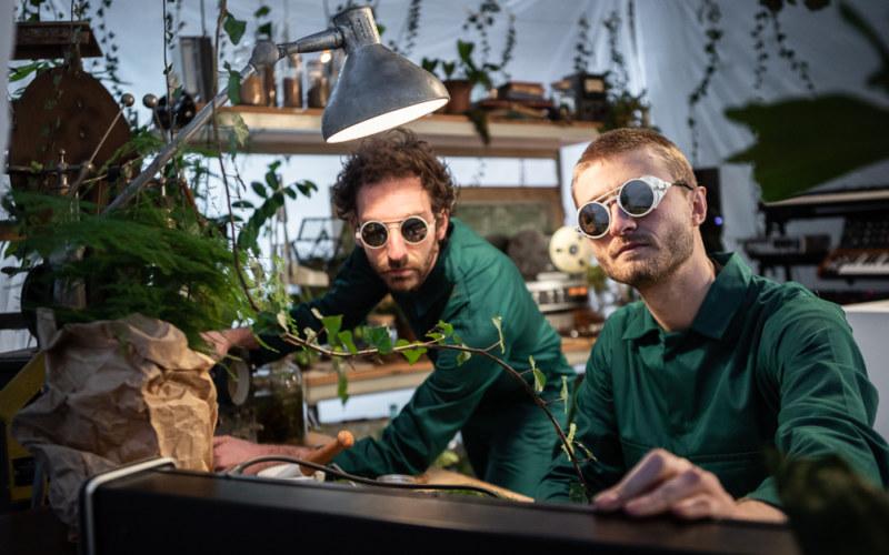 labotanique, expressions vegetales