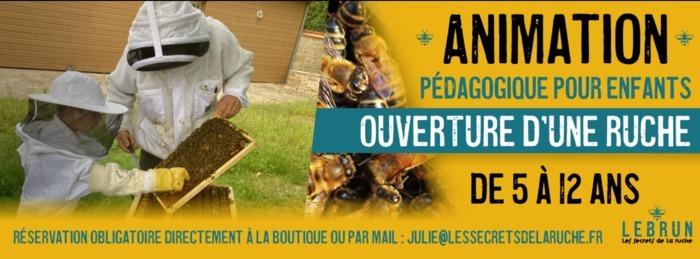 Lebrun Apiculture – Animation Pédagogique pour enfants – Ouverture d'une ruche Boutique Lebrun Apiculture