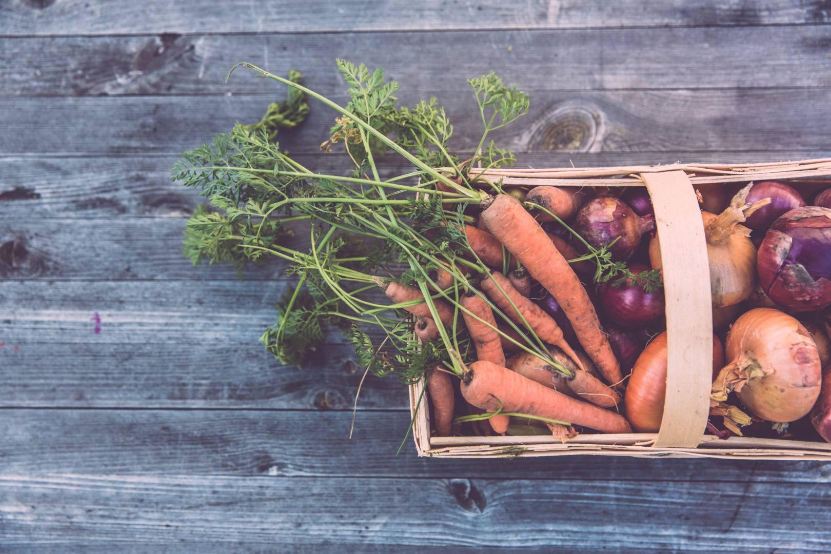 jardin graines de liberté legumes graines