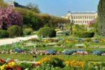 Visite guidée : Balade au Jardin des Plantes Jardin des Plantes Paris
