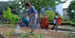 Aidez les CQ du 9e durant la fête des jardins Collège Jacques Decour Paris