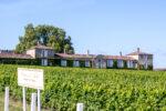 Fascinant Weekend Vignobles & Découvertes au château d'Arche Sauternes