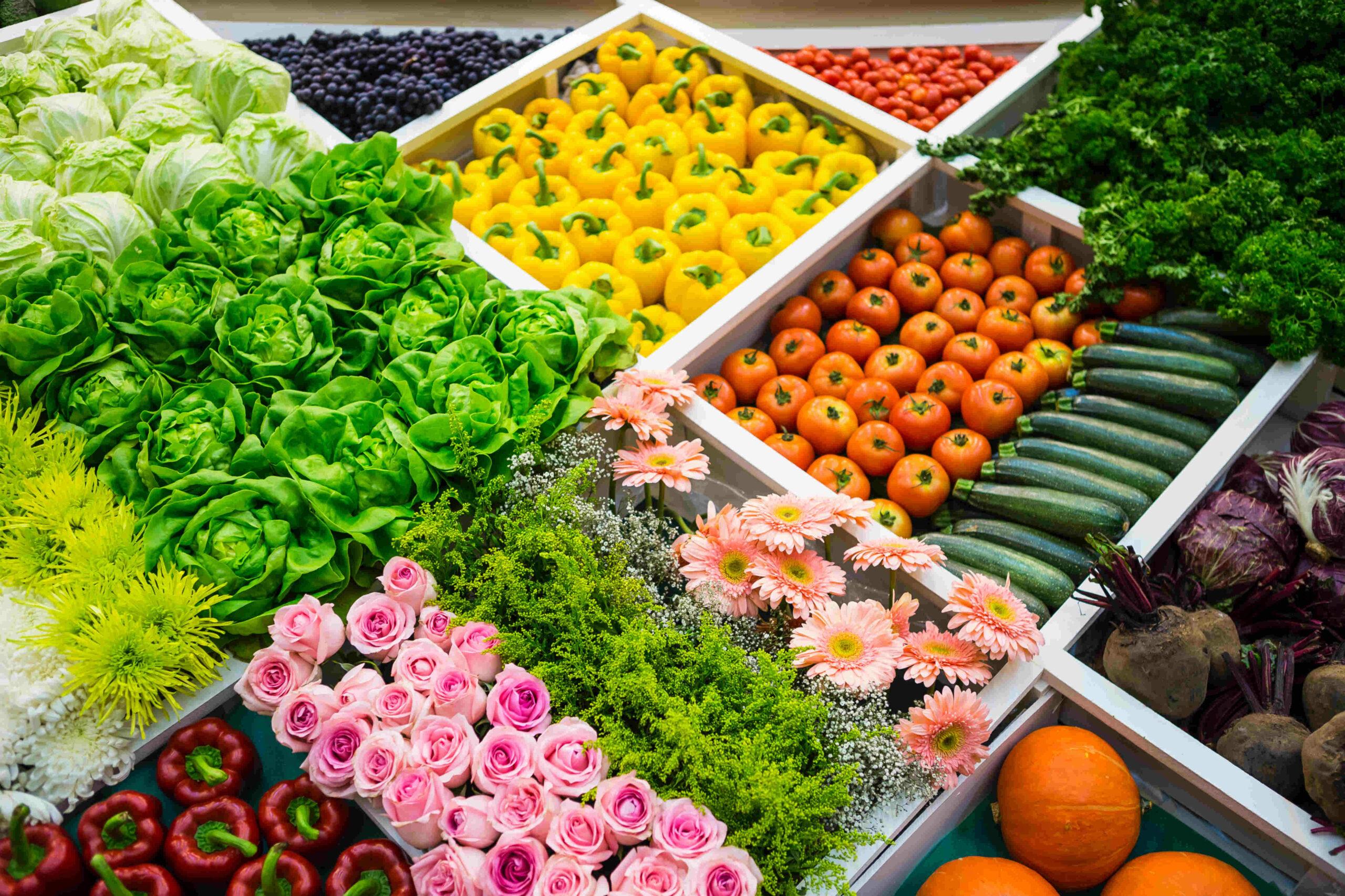 Fête des jardins et l'agriculture urbaine dans le 15e ! Gare de Vaugirard Paris