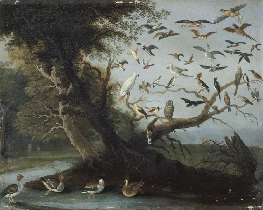 Jan I Van Kessel