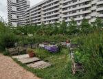 Végétalisation participative Maison du Jardinage - Pôle ressource Jardinage Urbain Paris