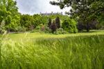 Le 8e fête les jardins et l'agriculture urbaine Parc Monceau Paris