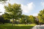 Paris 14e fête les jardins et l'agriculture urbaine Parc Montsouris Paris