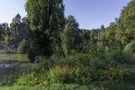 Paris 19e fête les jardins et l'agriculture urbaine Parc des Buttes-Chaumont Paris
