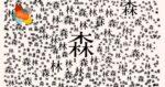 Écritures japonaises Bibliothèque universitaire des langues et civilisations (BULAC) Paris