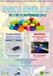 EXPOSITION DE STRUCTURES EN LEGO Remiremont   2021-10-30