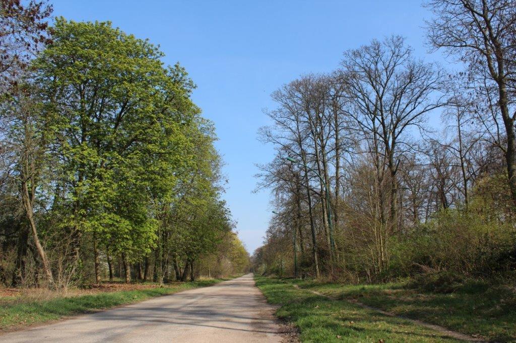 La nature au bois de Vincennes Parc Floral de Paris