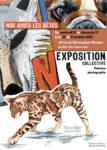 Exposition « Nos amies les bêtes » à Rennes L'Atelier. Espace de création à Rennes (Ille-et-Vilaine) Rennes