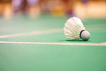 Stage Automne: Badminton Centre Paris Anim' Bessie Smith ex Reuilly Paris