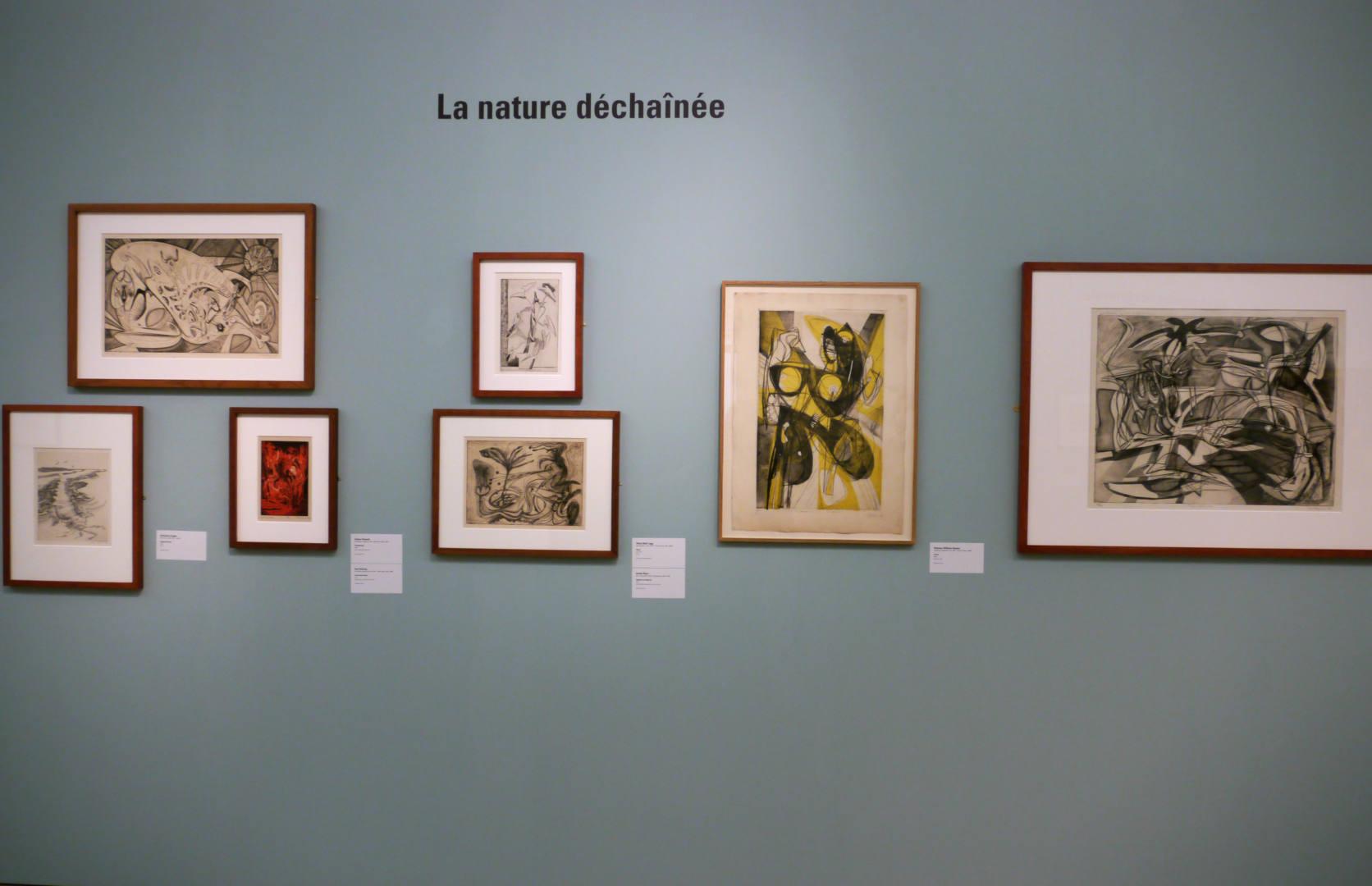 musée des beaux arts de rennes hayter